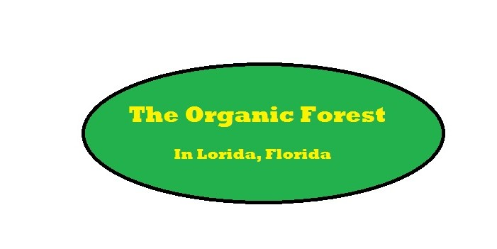 The Organic Forest